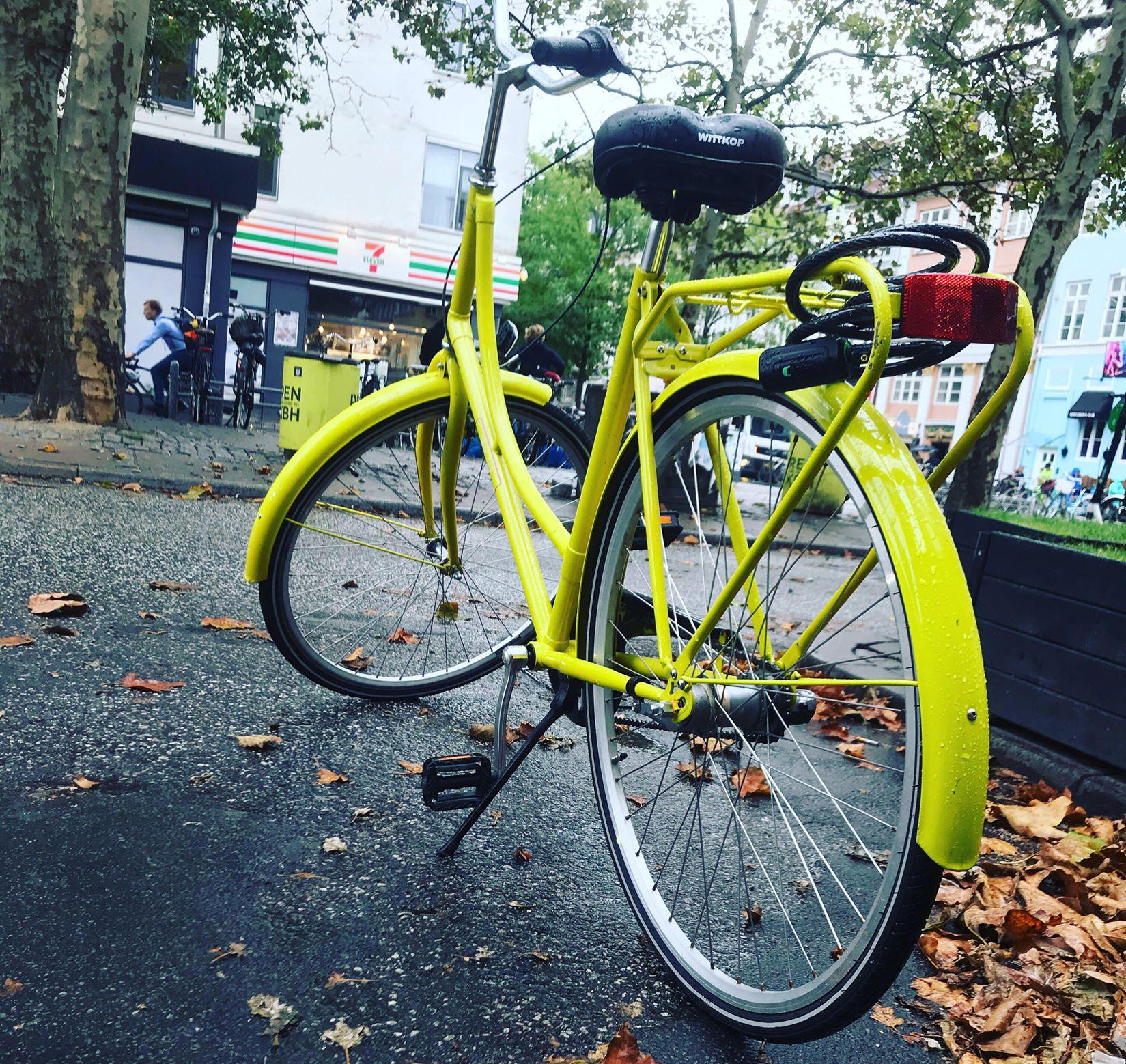verasrengoring-cykler